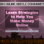 cover for zim online making money